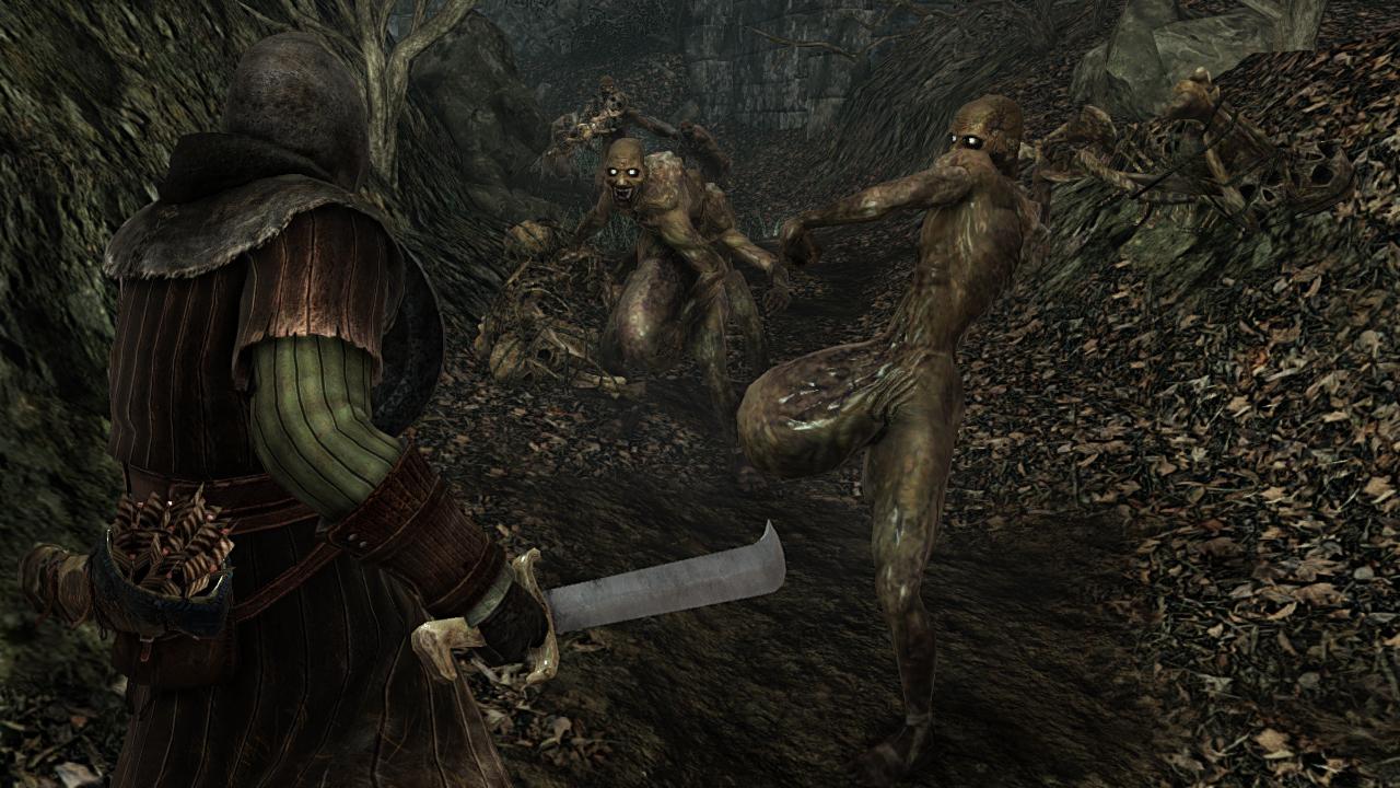 Dark Souls II (21)
