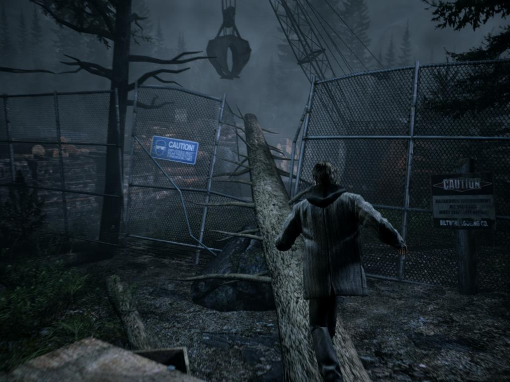 Alan Wake in Forrest by Night